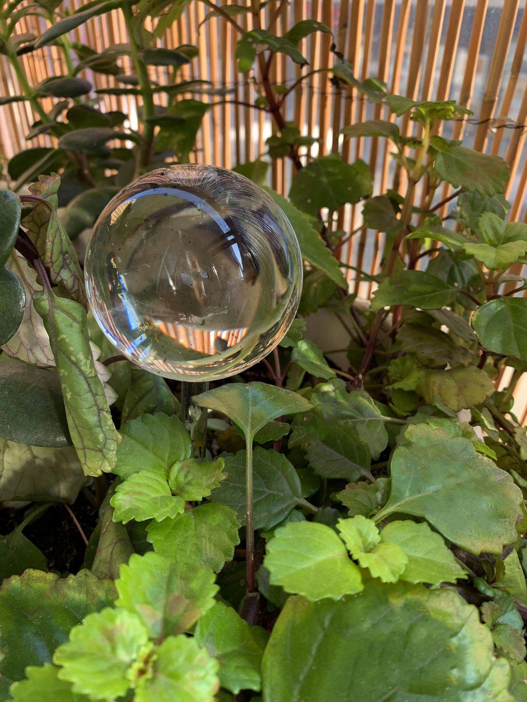 Globes d'irrigation ou bulles d'arrosage - La Revue Vertu