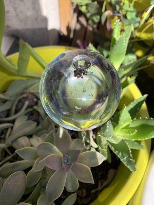 Les globes d'irrigation ou bulles d'arrosage - La Revue Vertu