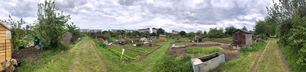 common allotments jardins familiaux Londres London 360