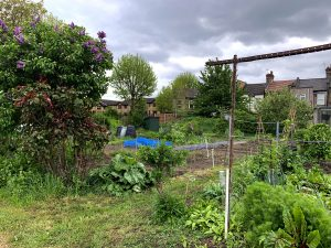 common allotments jardins familiaux Londres London