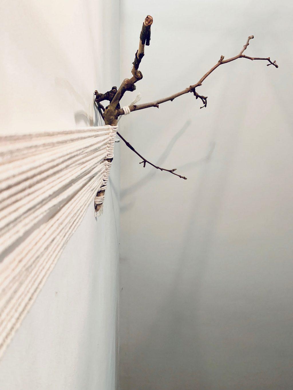 macramé hanger plante vue bas - La Revue Vertu