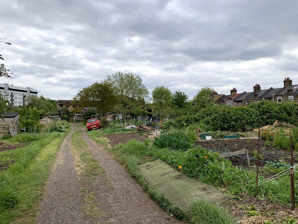 common allotments jardins familiaux Londres London Victory gardens